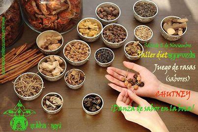 Especias: medicinas naturales en el taller de dietAYURVEDA de SUKHAgni